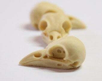 bird raven skull needle minder - needleminder pinminder needlecraft xstitch accessory