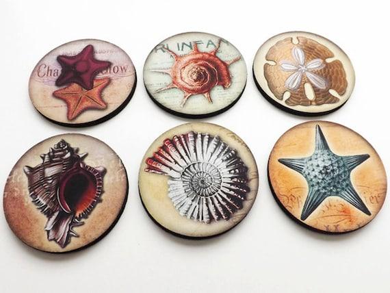 Ocean Shells Coasters mug mats hostess gift coastal sea nautical starfish sand dollar party favor shower stocking stuffer nature home decor