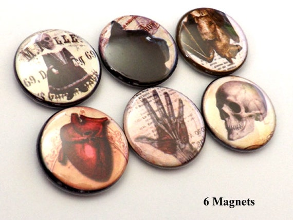 Halloween Goth fridge MAGNETS skull anatomical heart black cat raven crow spider party favor stocking stuffer button pins macabre home decor