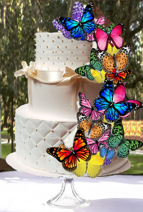 butterfly cake decorations edible butterflies multi color assortment butterfly cake 2163
