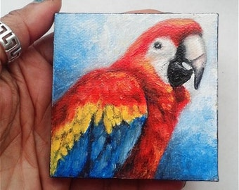 "Mini Oil Painting Macaw Pet Bird Portrait 3""x 3"" READY to SHIP"