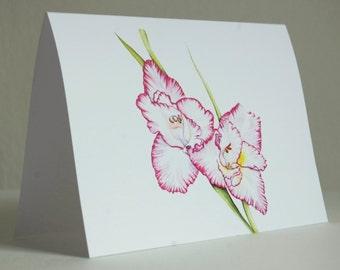 Pink Gladiolus Greeting Card
