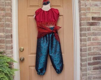 Jasmine costume, Aladdin costume, Genie costume--four piece-top, pants, hairpiece, scarf