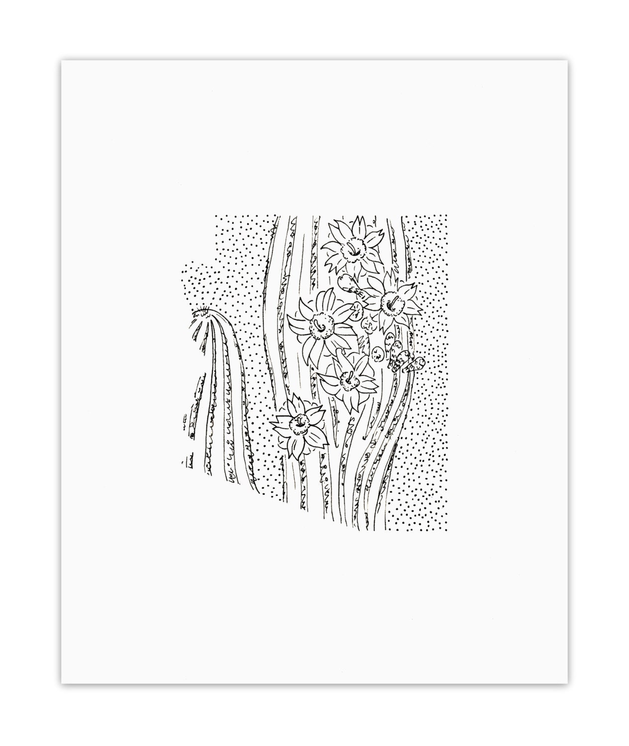 Arizona Saguaro State Flower Drawing Giclee Print
