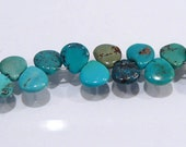 Genuine Turquoise  Smooth Briolette Gemstone Beads....6x6mm.....8 Beads