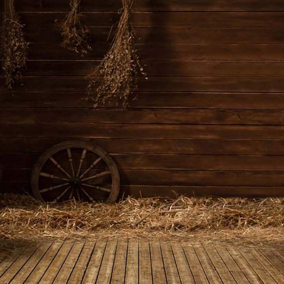Quiet farm 10ft x 10ft backdrop computer printed photography for Hardwood floors and babies