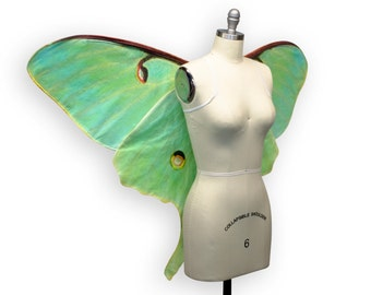 Oversized LUNA MOTH Costume Wings, Moth Costume, Made to Order