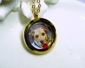 PET MEMORIAL Gold Photo Locket Necklace ,Plain Edge or CZ, Extra Long Chain, Memory, Charm, Floating, Glass, Living