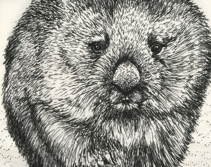 "Wild Wombats  fabric collection by Cindy Watkins ""Chubby Wombat "" Back & White original design"