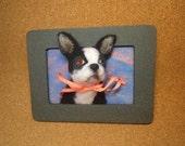 Boston Terrier Framed Needle-Felted Portrait