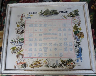 The Cottage Herb Garden vintage Herb Chart Washington Cathedral Mount St Alban 1948 original white wash frame beautiful graphics recipes