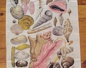 Vintage Beautiful Barbados Shells Souvenir Tea Towel 100% Natural Linen  27x16.5 in., Pink Shells, Brown Shells