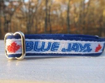 Toronto Blue Jays Cat or Small Dog Collar