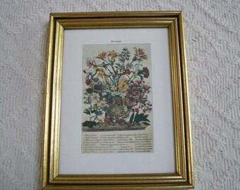 Vintage Home Decor Wall Hanging October Botanical Floral Print Robert Fuller