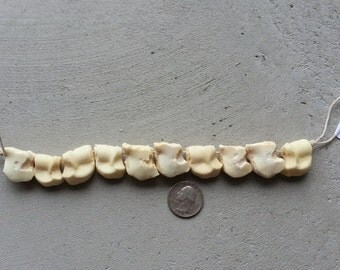 Strand of Large Mule Deer Bone Beads - Real Bones -10 pcs - Lot No. 0516-B