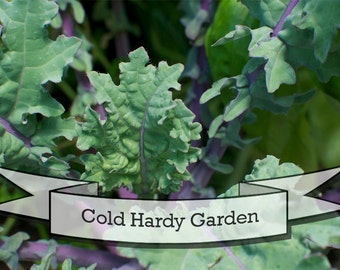 Cold Hardy Garden Seeds - Gift Set in Tin Box