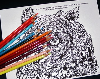 4 page Great Horned Owl Bird Camouflage Highly detailed Coloring Pages Packet with 1 Inspiring Positive quotes Closeup