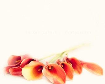 Nature photography, flower photograph, calla lilies wall art print, orange, green, botanical home decor, modern fine art, minimalist  nature