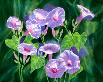Lavender morning glory painting, flowers watercolor art, original watercolor, floral watercolor painting, lavender flowers 10.5 x 12