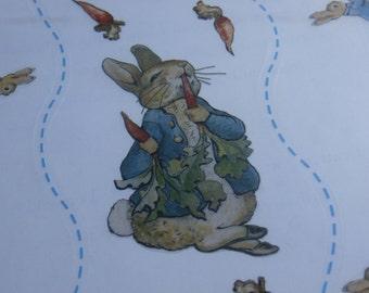 10 Sheets Beatrix Potter Hopping Peter Border Big Stickers 2001 Colorbok, Peter Rabbit