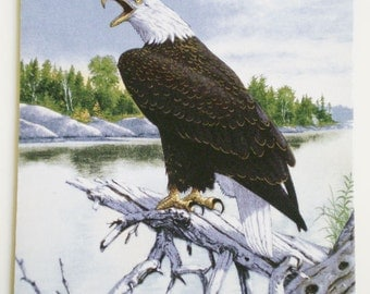 Majestic Eagle  on a branch mousepad
