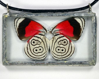 Real Butterfly Necklace - Kluges 88 - Glass And Lead Free Solder