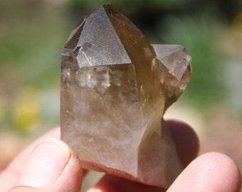 Smokey Citrine Quartz Crystal Cluster Specimen