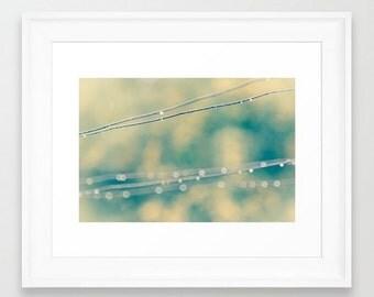 Wall Decor Photograph Raindrops on Clothesline