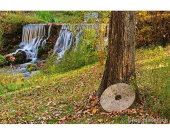 Fine Art Color Photography of an Old Millstone Against a Tree at Reed Spring in the Missouri Ozarks
