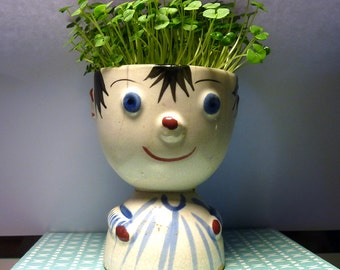 Chia Boy . . . CHIA KITS for Growing Your Own Indoor-Vitamin-Rich Chia Garden in Mid-Century Planters