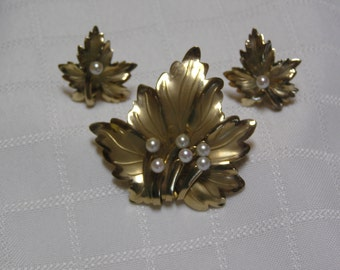 Van dell  12 kt gold filled pearl buds leaf brooch and screw back earrings