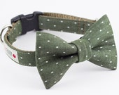 Chambray Olive Dot Dog Bowtie Collar