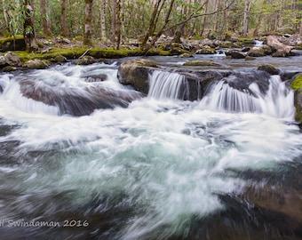 Smoky Mountain Stream Landscape