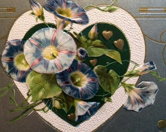 Valentine Postcard - Morning Glory Flowers - Heart