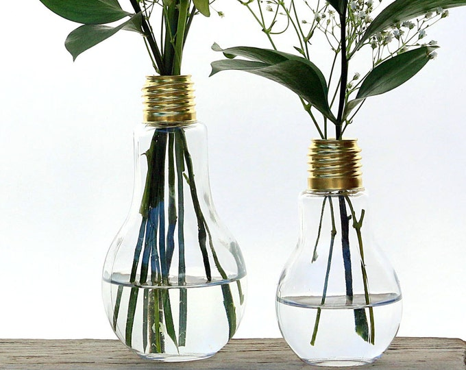 Light Bulb Bud Vase Pair, Large And Small Rustic Farmhouse Kitchen Table Decor,