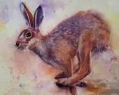 Running Hare, original watercolor