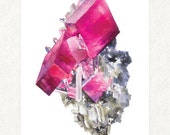 "Pink Rhodochrosite -  5"" x 7"" Watercolor Art Print- Item #: 0022"