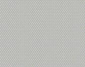 Scenic Route Dots in Gray, Deena Rutter, Riley Blake Designs, 100% Cotton Fabric, C3665-GRAY