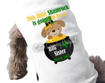 Dog shirt St. Patrick's Day big brother/Sister to be little shamrock pregnancy announcement dog Tshirt St Paddy's Day
