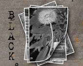 LETTER I Alphabet Photography LETTERS - Black and White Alphabet Photos