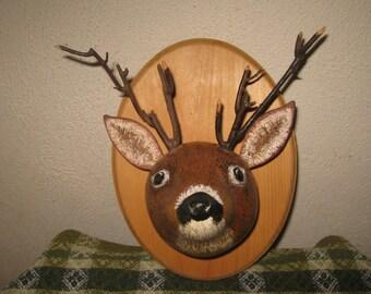 Mounted Gourd Whitetail Deer
