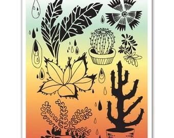 Hearty Plants, Rainbow