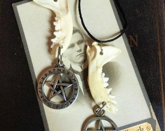 Jaw Bone Necklace- real bone jewelry
