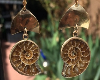 Ammonite Fossil Large Gold Petal Earrings