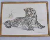 Signed Watercolor Painting, Lion Cub