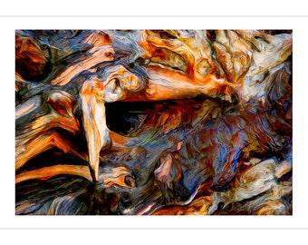 Fallen Tree -- by James Ribniker -- Giclee on paper
