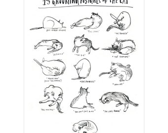 SIGNED! 13 Grooming Postures of the Cat