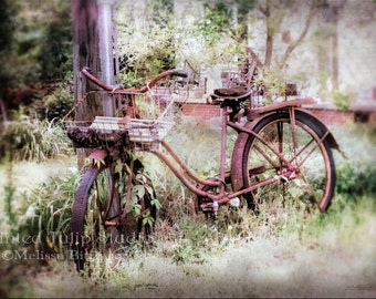 Old Vintage Rusty Bicycle Art Still Life  Nostalgic Shabby Cottage Chic Rustic Wall Art Fine Art Photography Print