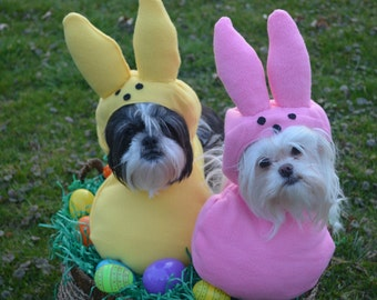 Custom Made Easter Candy dog costume  for your small pet/dog up to 20 pounds