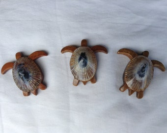 Koa and Opihi shell Turtle Magnet